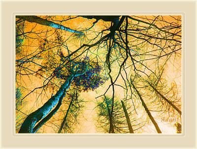 Art Print featuring the photograph Orange Sky Tree Tops by Felipe Adan Lerma