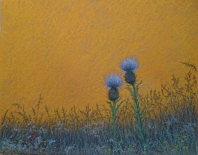 Pastel - Orange Sky With Thistle by Gary Edward Jennings