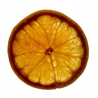 Photograph - Orange Slice by Bob Senesac