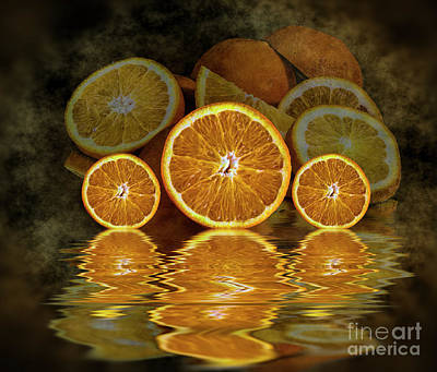 Photograph - Orange Slices by Shirley Mangini