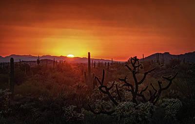 Photograph - Orange Sonoran Skies  by Saija Lehtonen
