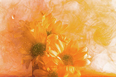 Photograph - Orange Splash 2 by Kathryn Bell