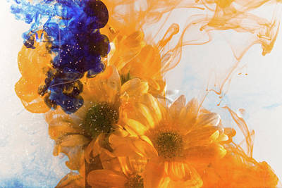 Photograph - Orange Splash, Blue Too by Kathryn Bell