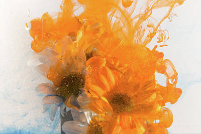 Photograph - Orange Splash by Kathryn Bell
