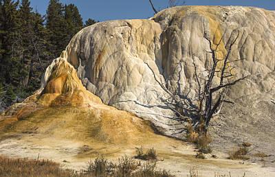Photograph - Orange Spring Mound by Loree Johnson