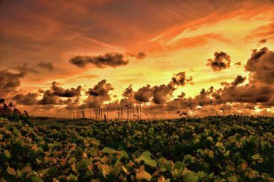 Fog Painting - Orange Sunrise Delray Hdr by Ken Figurski