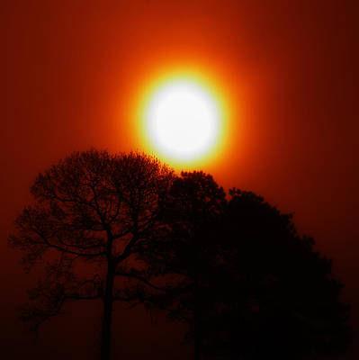 Photograph - Orange Sunrise by Greg Collins