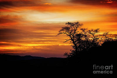 Photograph - Orange Sunrise by Scott Kemper