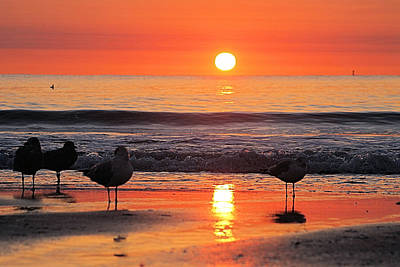 Photograph - Orange Sunrise Shine by Robert Banach