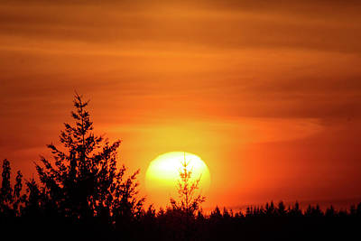 Photograph - Orange Sunset At Chehalis by Tikvah's Hope