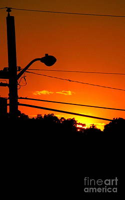 Photograph - Orange Sunset by Colleen Kammerer
