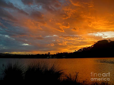 Orange Sunset Glow Art Print by Kaye Menner