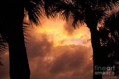 Photograph - Orange Sunset Silhouette by Jennifer White