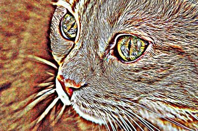 Orange Tabby Mixed Media - Orange Tabby Cat Abstract Animal Art by Elizavella Bowers