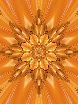 Digital Art - Orange by Ted Raynor
