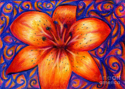 Orange Tiger Lily Drawing Art Print