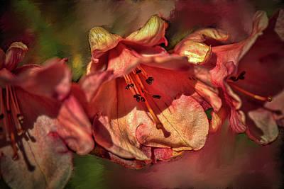 Photograph - Orange Trio #h5 by Leif Sohlman