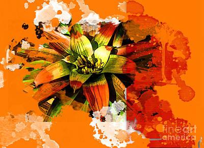 Orange Tropic Art Print by Deborah Nakano