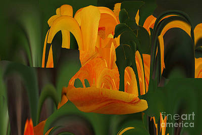 Photograph - Orange Tulip Abstract by Rick Rauzi