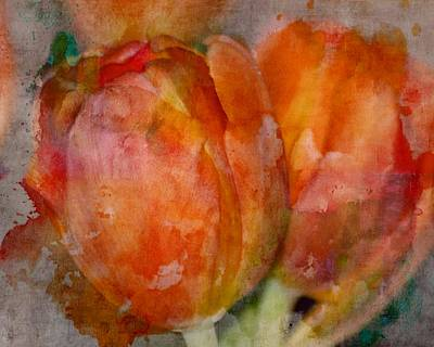 Photograph - Orange Tulip Watercolor by Sheri McLeroy