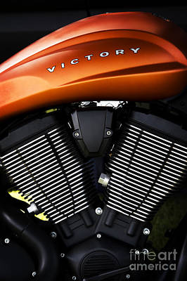 Photograph - Orange Victory by Tim Gainey