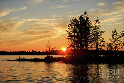 Photograph - Orange Warmth by Lori Dobbs