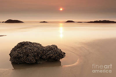 Beach Royalty-Free and Rights-Managed Images - Orange World by Masako Metz