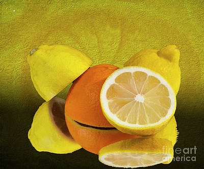 Photograph - Oranges And Lemons by Shirley Mangini