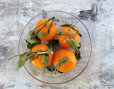 Photograph - Oranges by France Laliberte