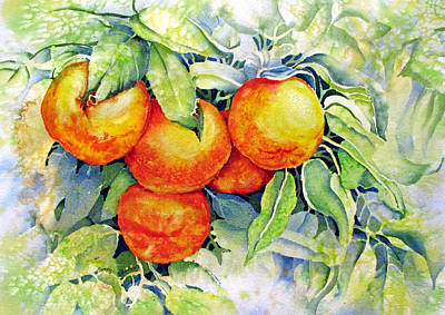 Oranges-in-italy Art Print by Nancy Newman