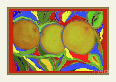 Photograph - Oranges by Shirley Moravec