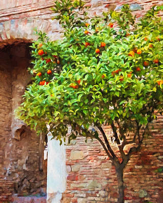 Orangetree Art Print by Lutz Baar