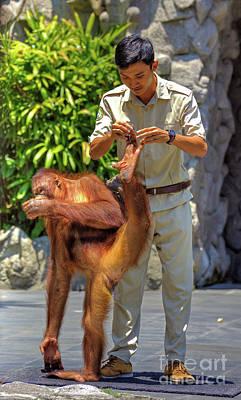 Orangutan Pedicure Art Print