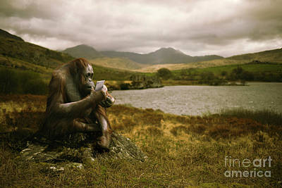 Orangutan With Smart Phone Art Print