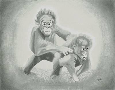 Baby Orangutan Drawing - Orangutans by Matthew Moore