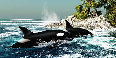Orca Digital Art - Orca Killer Whales by Corey Ford