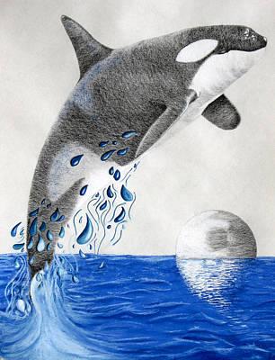 Orca Art Print by Mayhem Mediums