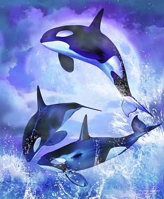 Orca Mixed Media - Orca Moonlight Dance by Carol Cavalaris