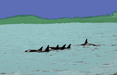 Orca Pod Art Print