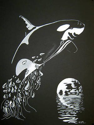 Orca Drawing - Orca Sillhouette by Mayhem Mediums