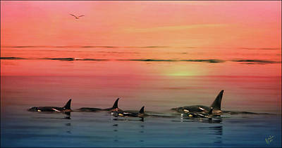 Digital Art - Orca Sunset by Rick Lawler