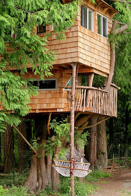 Wooden Ware Photograph - Orcas Island Treehouse by Art Block Collections