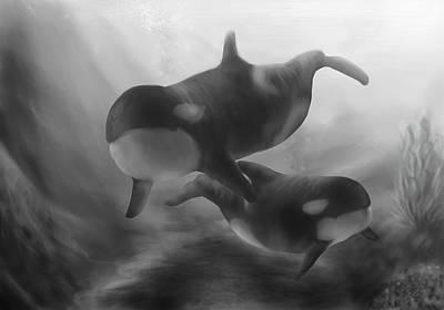 Cetacean Digital Art - Orcas by Sarah Stanaland