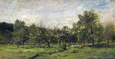French Painting - Orchard by Charles-Francois Daubigny
