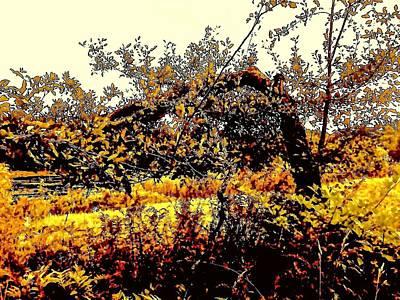 Orchard In Autumn Print by Elizabeth Tillar