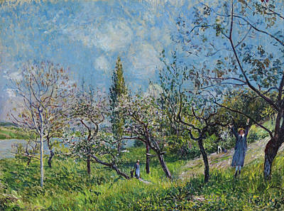 Alfred Sisley Painting - Orchard In Spring At By by Alfred Sisley