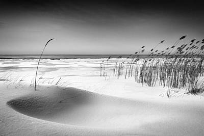 Reed Photograph - Orchestra by Reinis C?rulis