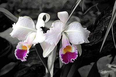Orchid #5501 Inimitable Flower Art Print