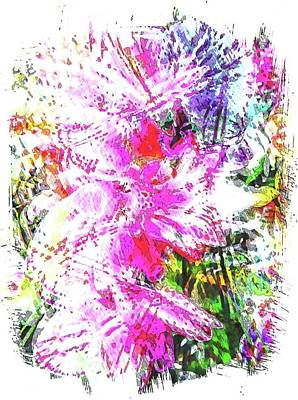 Photograph - Orchid Abstract by Dorothy Berry-Lound