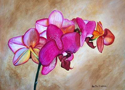 Painting - Orchid by Anita Carden